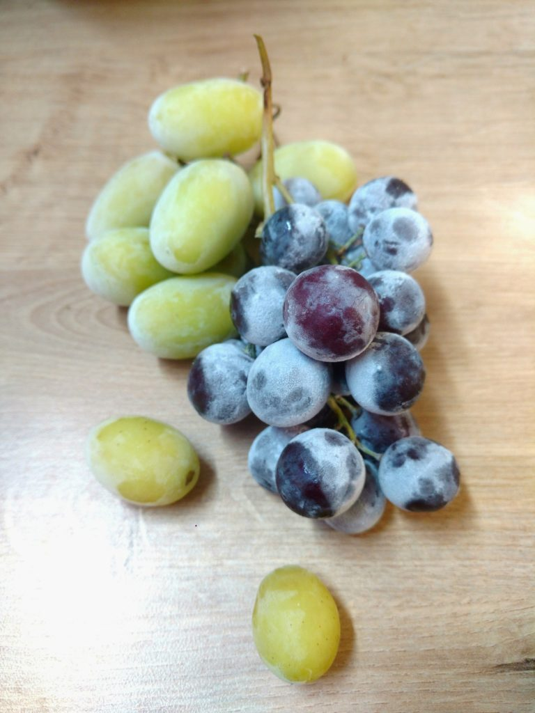 gefrorene Weintrauben - der perfekte Sommersnack